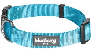 labradoodle puppy collar