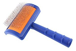 brush for a labradoodle dog's coat
